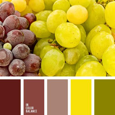 paleta-de-colores-2351