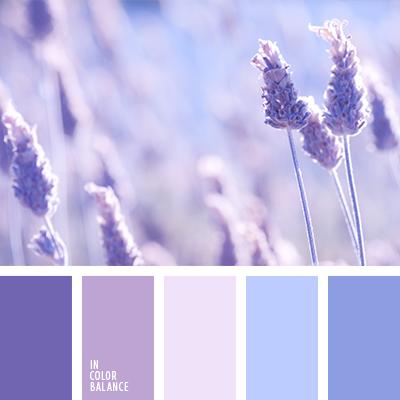 paleta-de-colores-2353