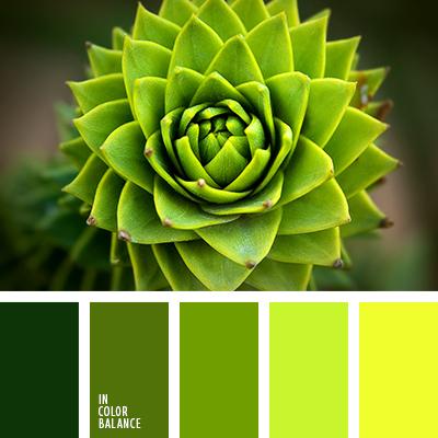 paleta-de-colores-2354