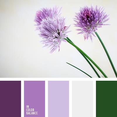 paleta-de-colores-2359