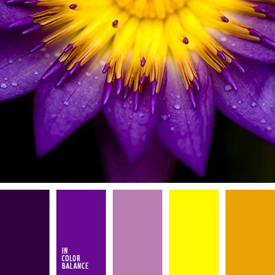 paleta-de-colores-2362