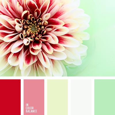 paleta-de-colores-2369