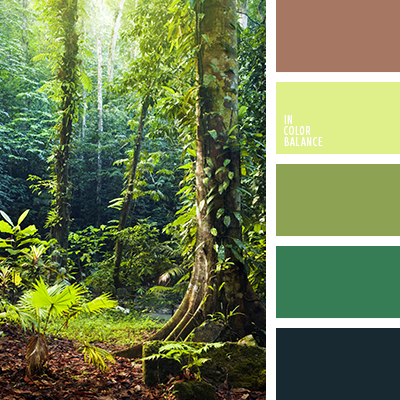 paleta-de-colores-2373