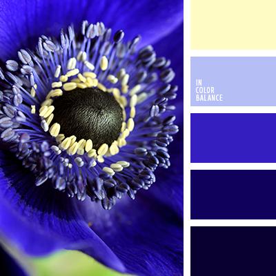 paleta-de-colores-2376