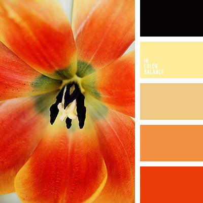 paleta-de-colores-2379