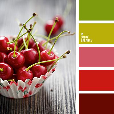 paleta-de-colores-2382