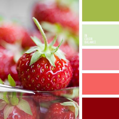 paleta-de-colores-2383