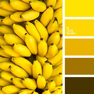 paleta-de-colores-2395