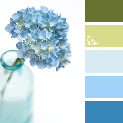paleta-de-colores-2400