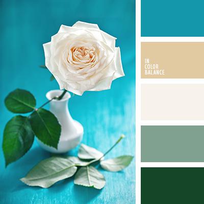 paleta-de-colores-2406