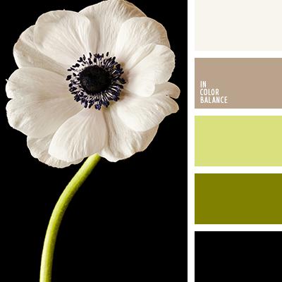 paleta-de-colores-2407