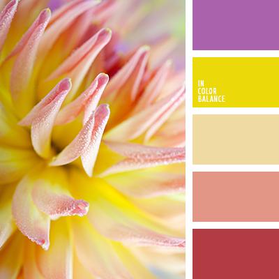 paleta-de-colores-2408