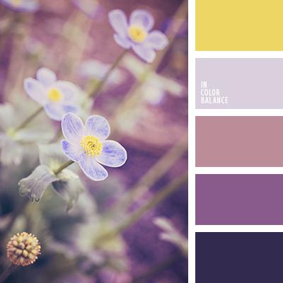 paleta-de-colores-2409