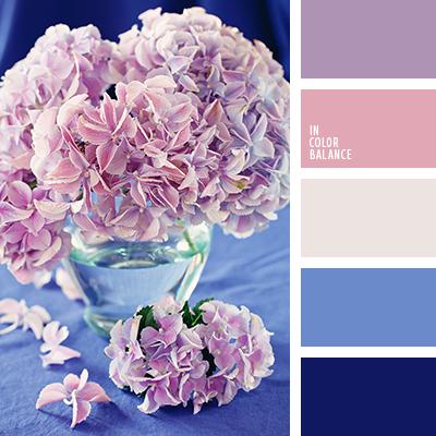paleta-de-colores-2410