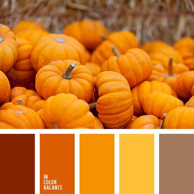 paleta-de-colores-2413