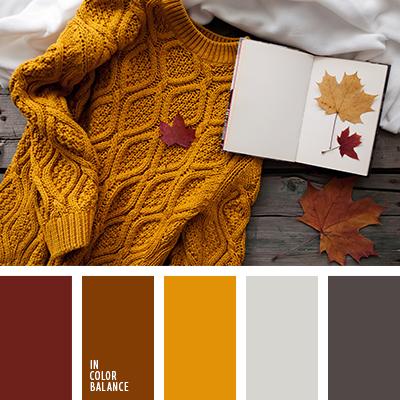 paleta-de-colores-2414