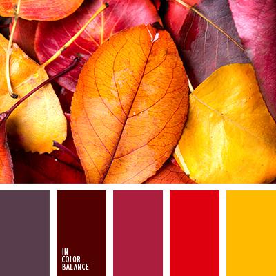 paleta-de-colores-2415