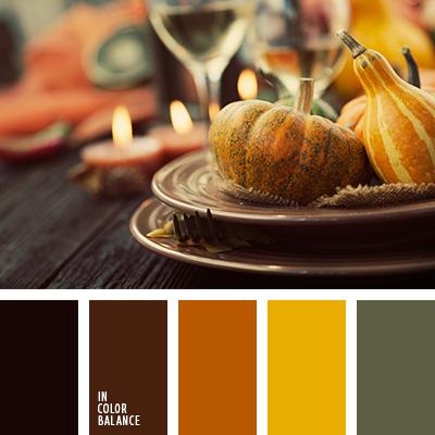 paleta-de-colores-2416