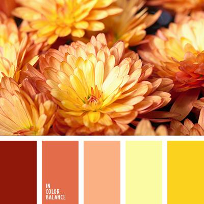 paleta-de-colores-2421