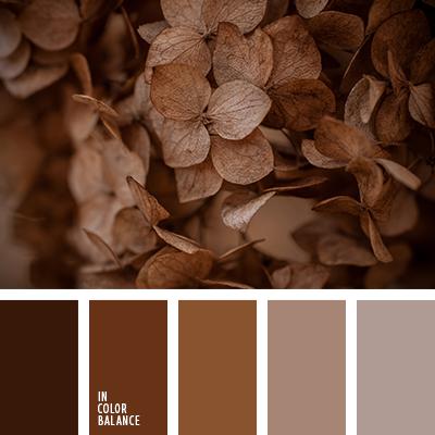 paleta-de-colores-2423