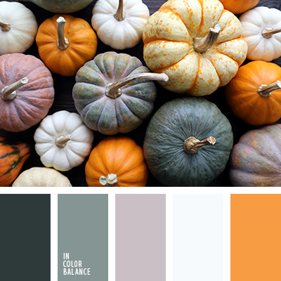 paleta-de-colores-2432
