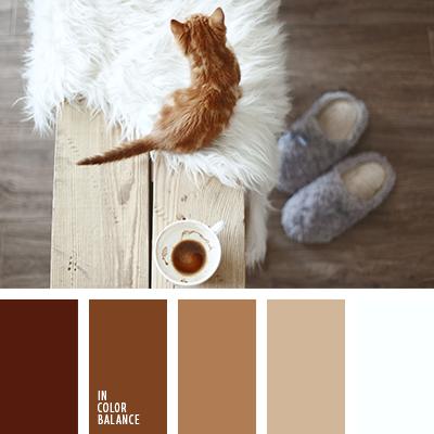 paleta-de-colores-2436