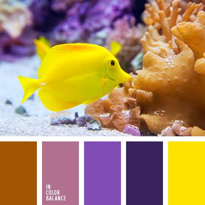 paleta-de-colores-2440