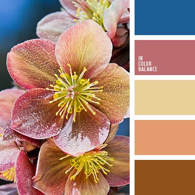 paleta-de-colores-2441