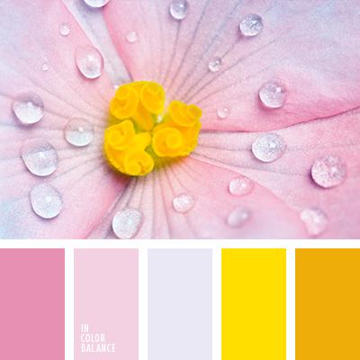 paleta-de-colores-2443