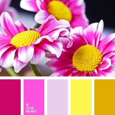 paleta-de-colores-2444