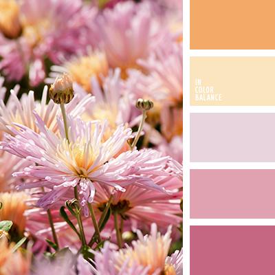 paleta-de-colores-2445