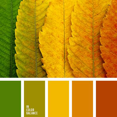 paleta-de-colores-2446
