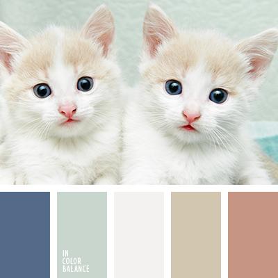 paleta-de-colores-2447