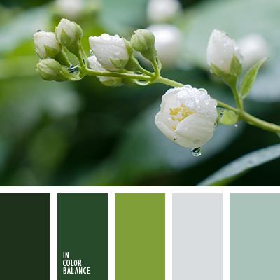 paleta-de-colores-2448