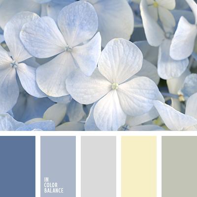 paleta-de-colores-2449