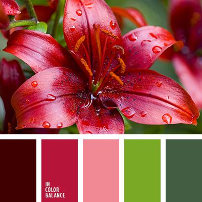 paleta-de-colores-2450
