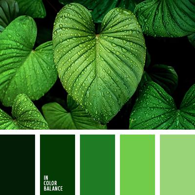 paleta-de-colores-2454