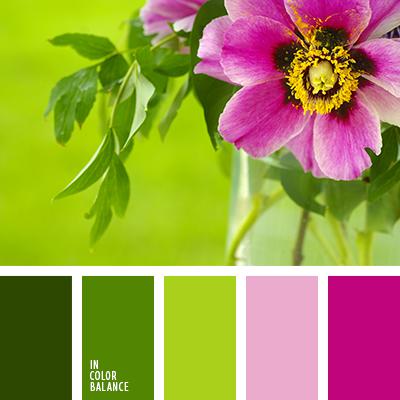 paleta-de-colores-2455