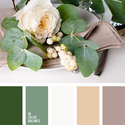 paleta-de-colores-2456