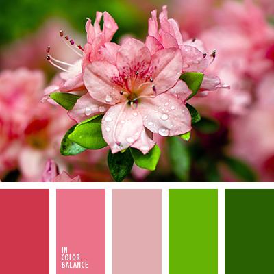 paleta-de-colores-2458