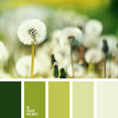 paleta-de-colores-2459