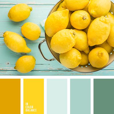 paleta-de-colores-2463