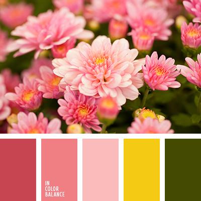 paleta-de-colores-2465