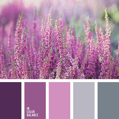 paleta-de-colores-2466
