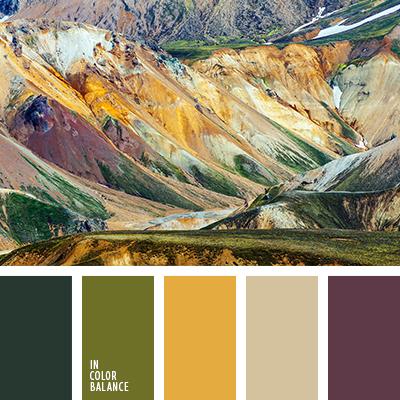 paleta-de-colores-2467