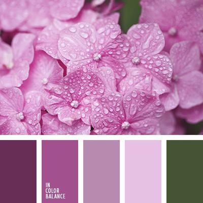 paleta-de-colores-2468