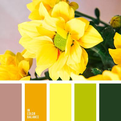 paleta-de-colores-2469