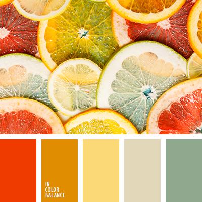 paleta-de-colores-2470