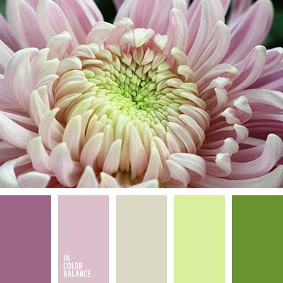 paleta-de-colores-2471