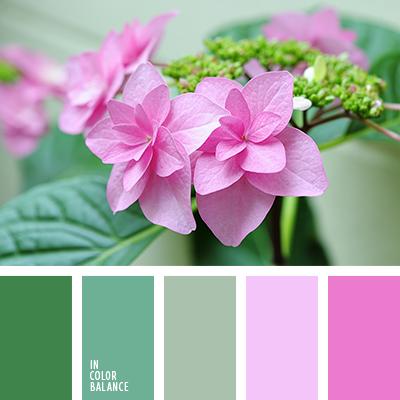 paleta-de-colores-2475